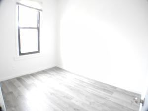 LIC newly renovated apt, bedroom available