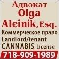 rusrek.com: Aleinik law 718-909-1989