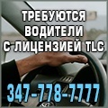 rusrek.com: 785 Водители TLC (такси) 347 778-7777