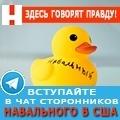 rusrek.com: Навальный (917) 808 8016