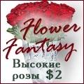 rusrek.com: 990 Fantasy Flower (347) 702-6448