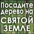 rusrek.com: Посади дерево