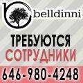 rusrek.com: 920 Belldinni +1 (646) 980-4248